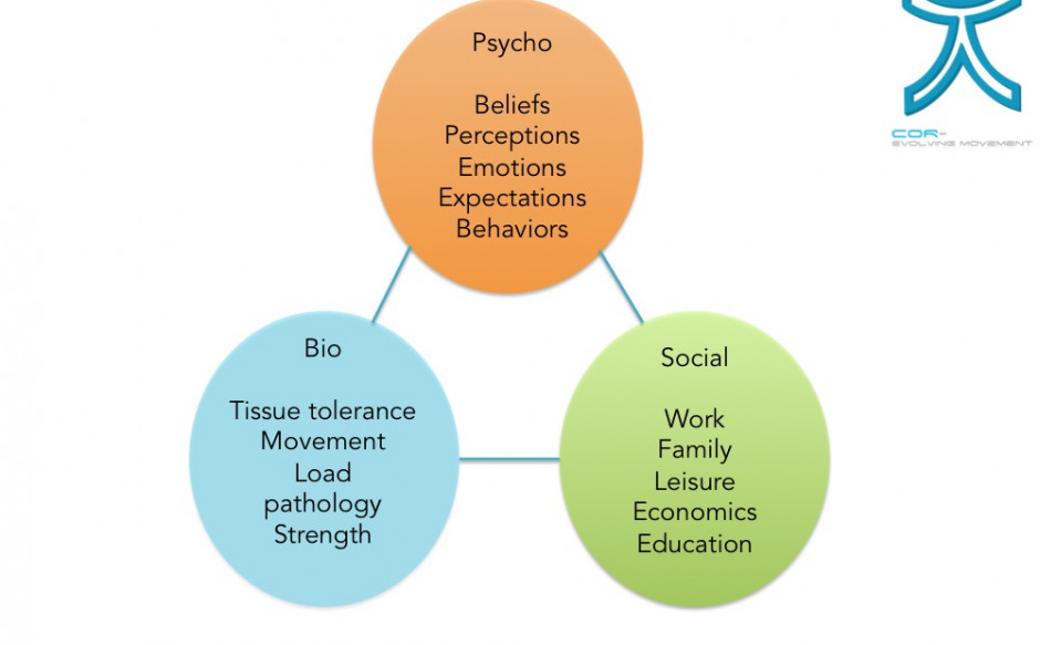 The Bio-Psycho-Social Model… ALL components are important!